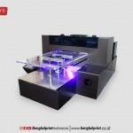 Printer UV LED Riecat Versi 2